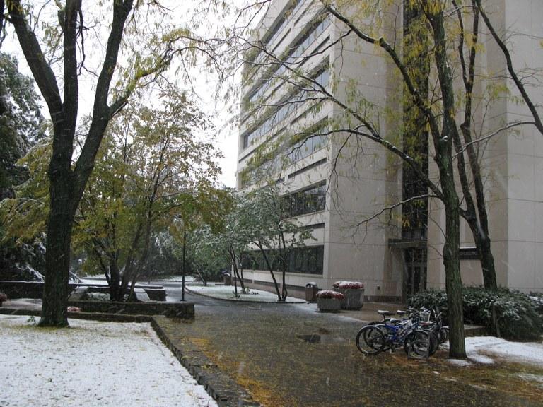 Snowfall-10-15-09