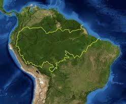 Amazonia Region, Brazil
