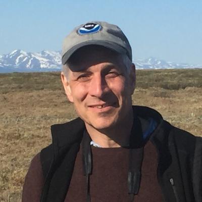 Steven B. Feldstein