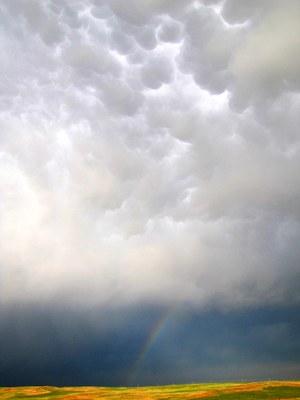 Brad Guay A rainbow and mammatus clouds in the Black Hills of South Dakota